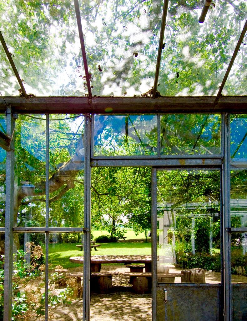 vergaderlocatie Apeldoorn Het Glazen Huis tuin veluwe groen