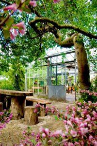 Tuin vergaderlocatie Apeldoorn Het Glazen Huis