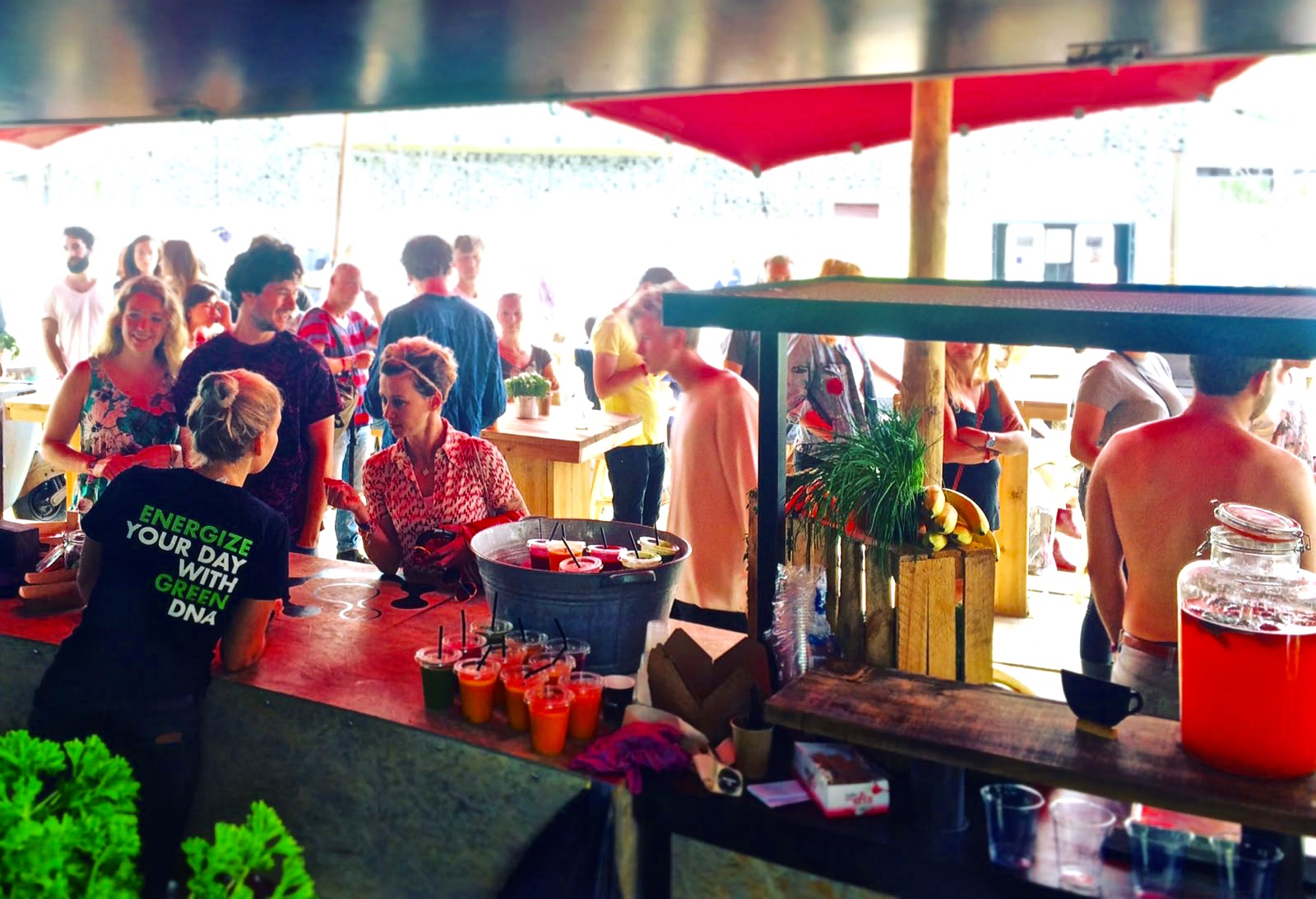 greendna evenementencatering festivals down the rabbit hole 2016