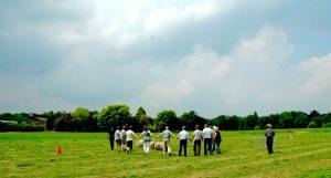 span of control teambuilding schapendrijven