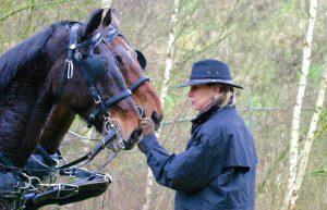 leiderschapstraining teambuilding Span of control paardencoaching paardenfluisteren