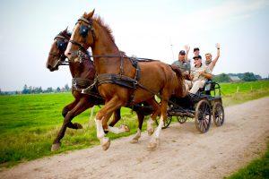 leiderschapstraining teambuilding Span of control paardenmennen GreenDNA